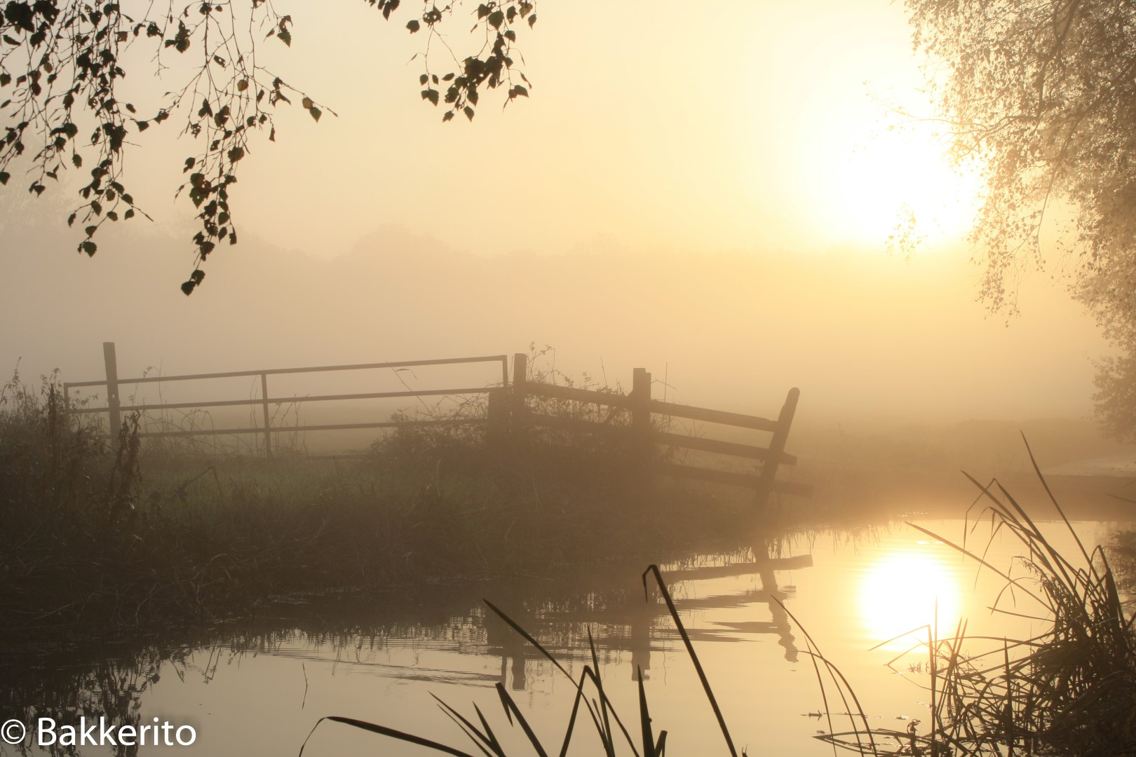 Sunrise over a meadow in Holland showing a fence.