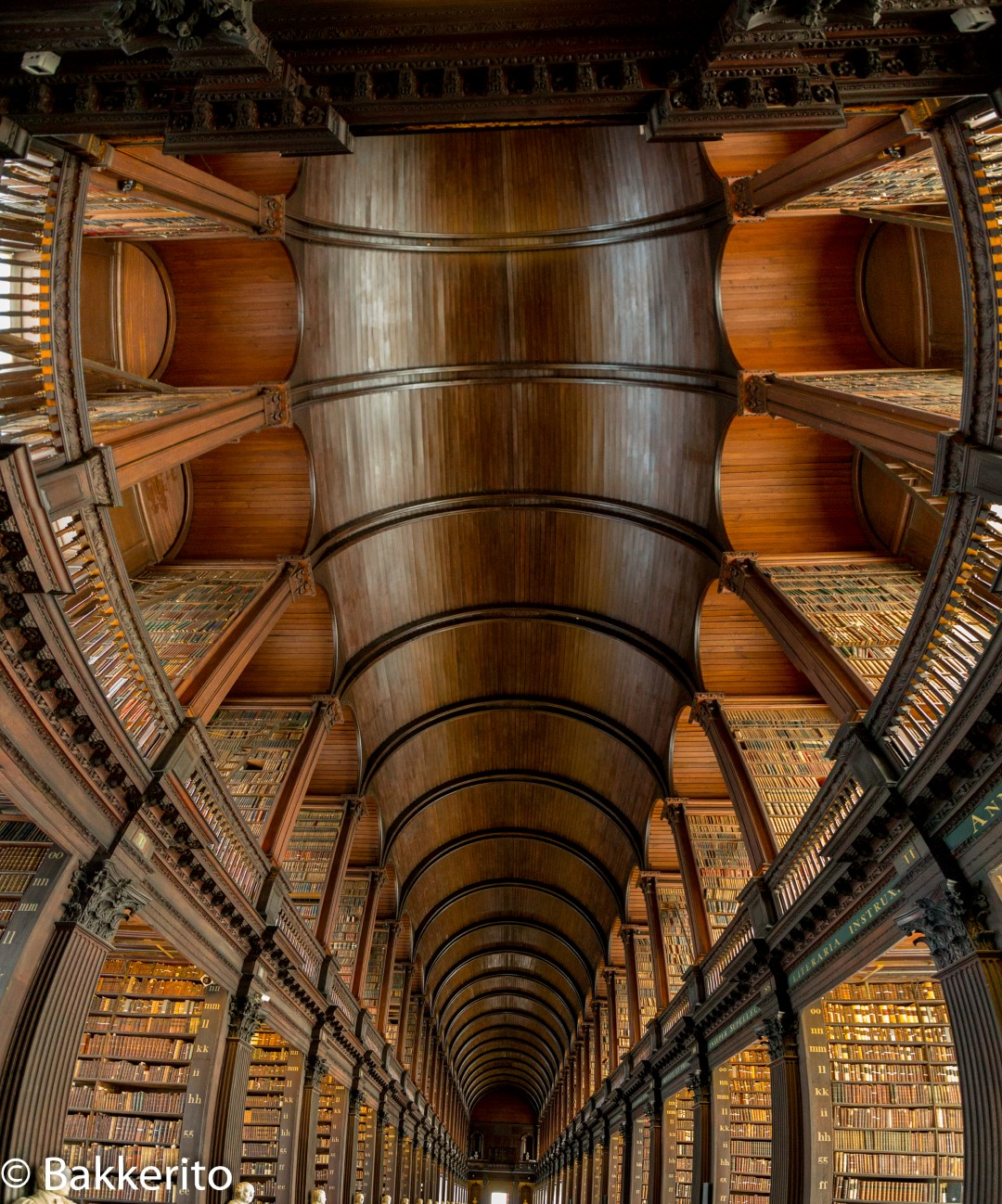 When you are in Dublin, visit the library on the University premises